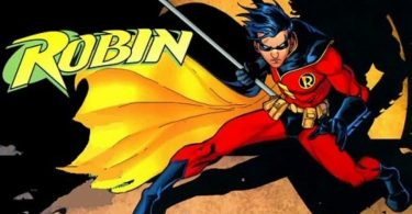 Robin Costume Guide