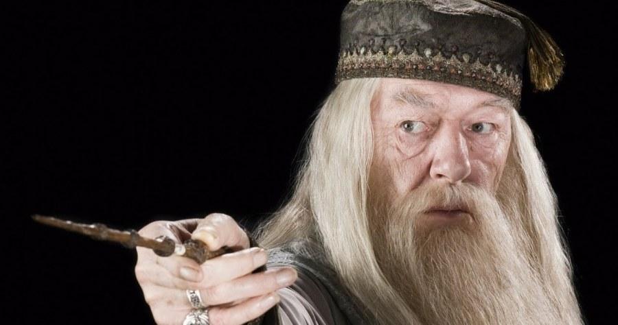 Harry Potter Dumbledor