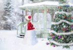 5 Ways to keep your Christmas Tree Fresh Longer