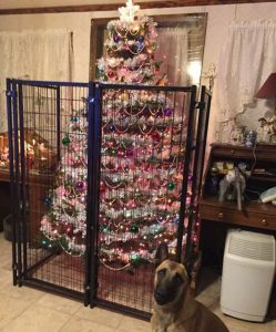 Build up a long cage, so that your dog might not get to destroy it