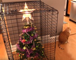 Protect your Christmas tree with a cage