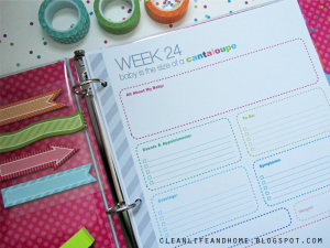 Pregnancy Planner and Journal
