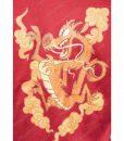 Wreck it ralph 2 Mulan Dragon Jacket