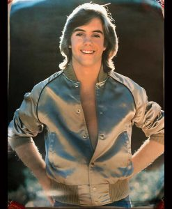 Shaun Cassidy The Hardy Boys 1977 Jacket